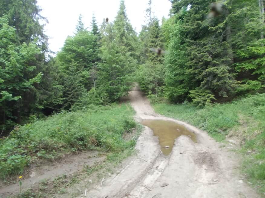 Coraz bardziej stromy szlak z Czorsztyna na Lubań
