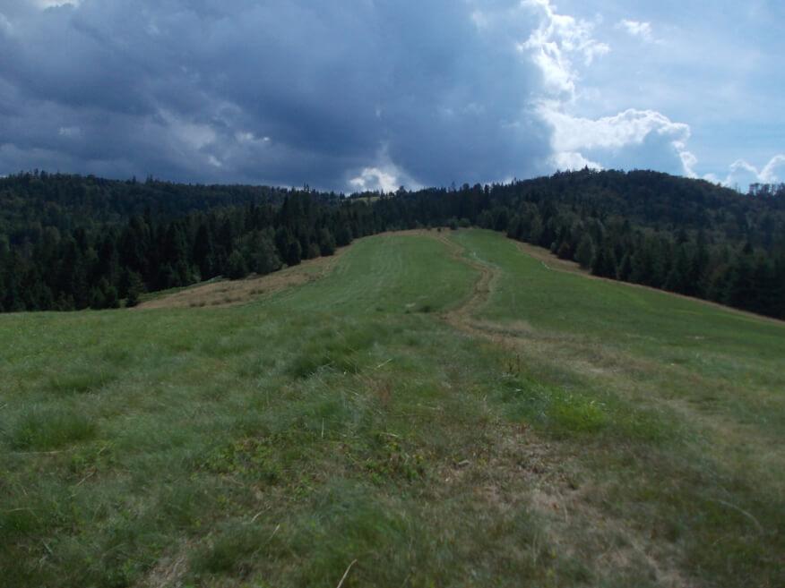 Rozległa polana pod Gronikiem
