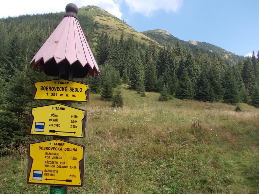 Bobrowiec z Przełęczy Bobrowieckiej