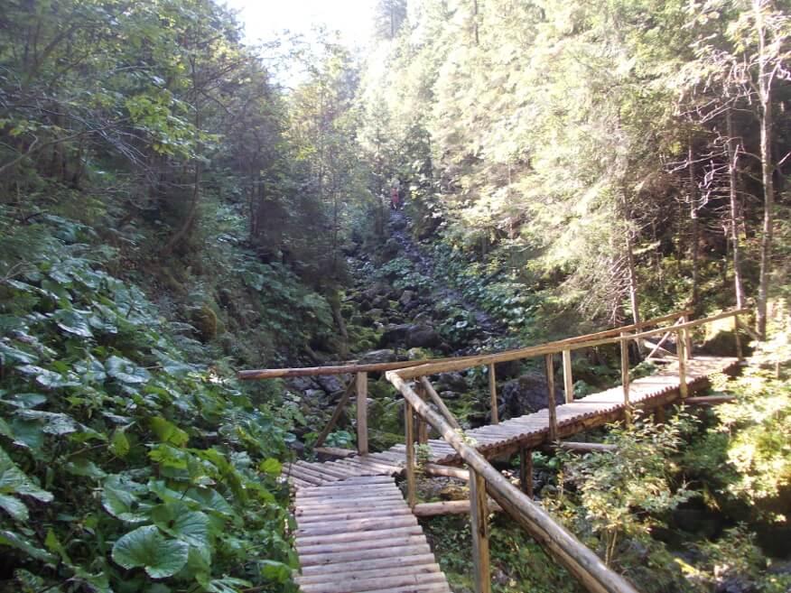 Mostek nad wyschniętym potokiem (Rigelsky potok)