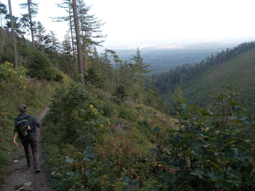 Na zielonym szlaku do Tatrzańskiej Kotliny