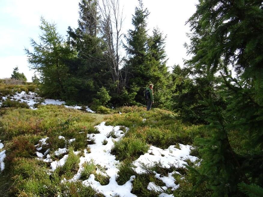 Resztki śniegu na Wielkiej Raczy