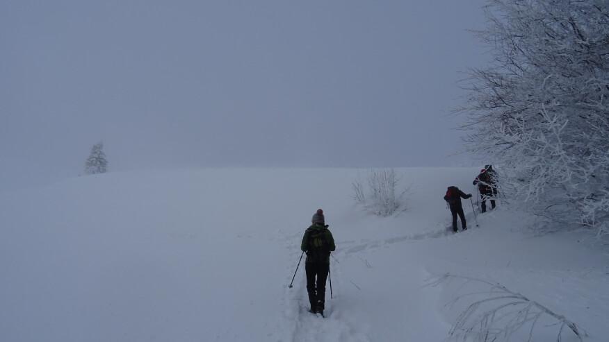 Asia i trzej turyści wychodzą na odkryty teren tuż pod Przełęczą Orłowicza