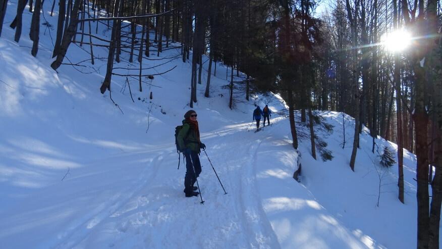 Idziemy za narciarzami na Przegibek