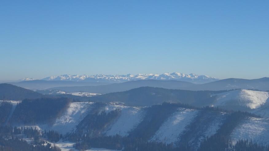 Widok na Tatry ze szlaku granicznego pomiędzy Przegibkiem a Wielką Raczą