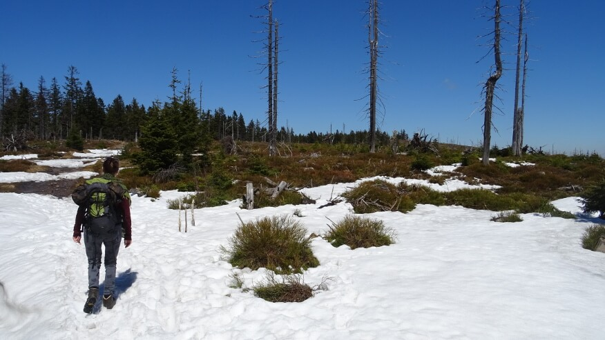 Pierwsze większe śniegi na szlaku