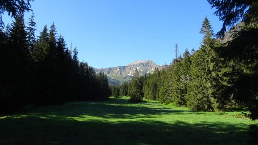 Pyszniańska Przełęcz, Błyszcz i Bystra z Wielkiej Polany Ornaczańskiej