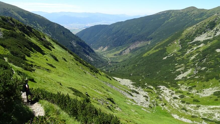 Dolina Żarska z góry