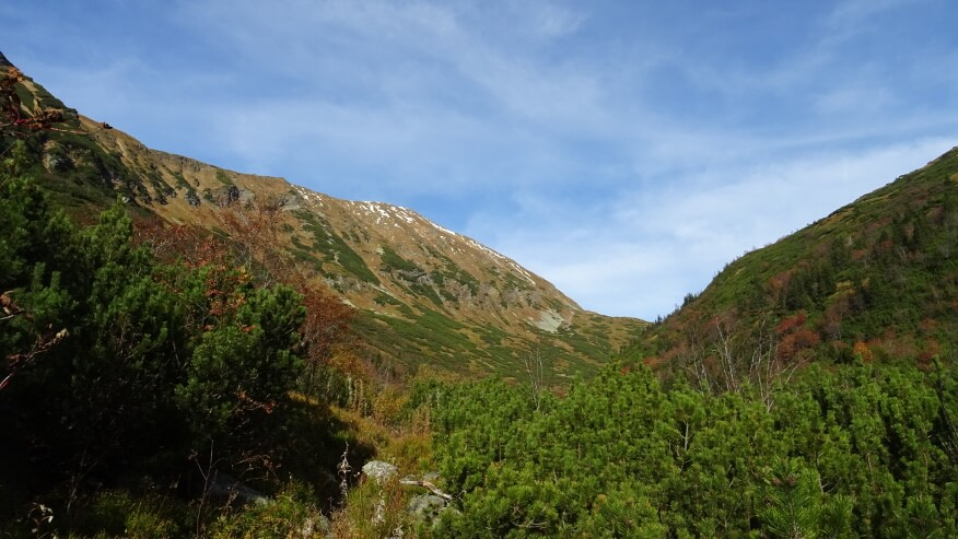 Zbocza Bystrej i górne piętro Doliny Kamienistej