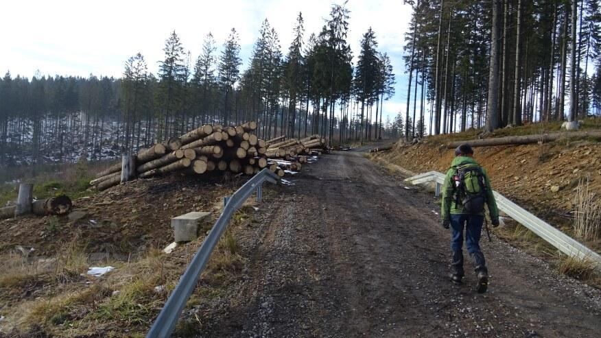 Ostatnie metry przed Przełęczą Łączecko