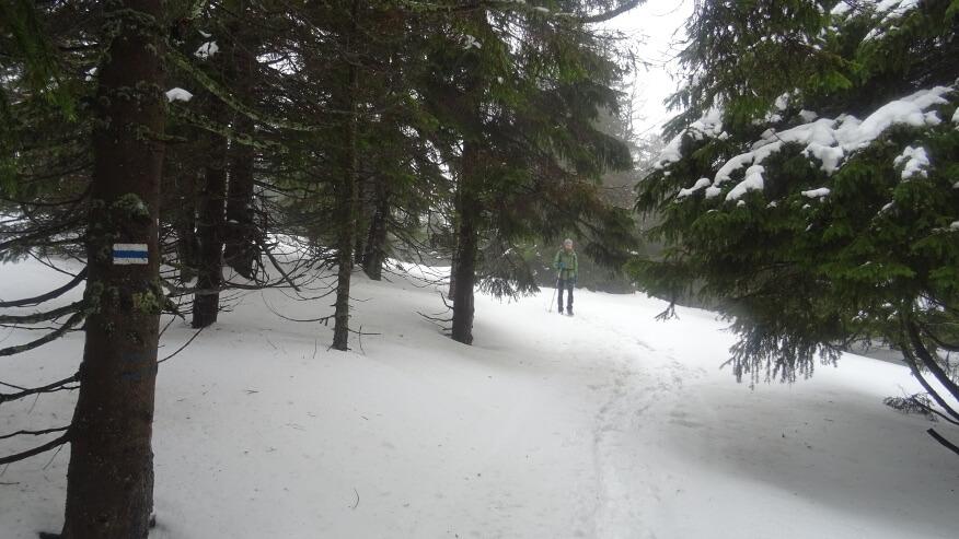 Asia na szlaku w pobliżu Małego Śnieżnika
