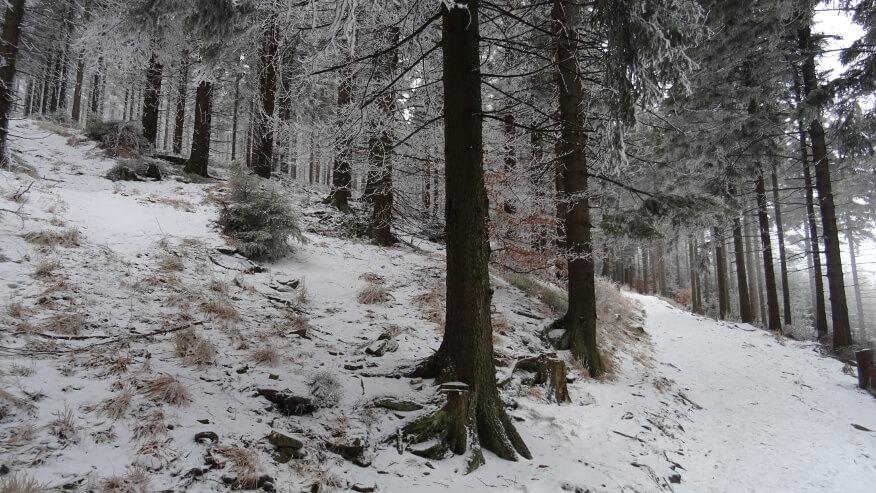 Zima na zboczach Średniaka