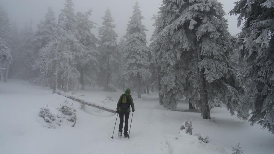 Asia w drodze na Śnieżnik