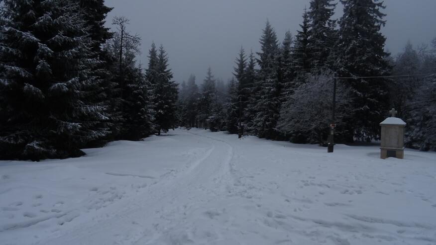 Przełęcz Śnieżnicka