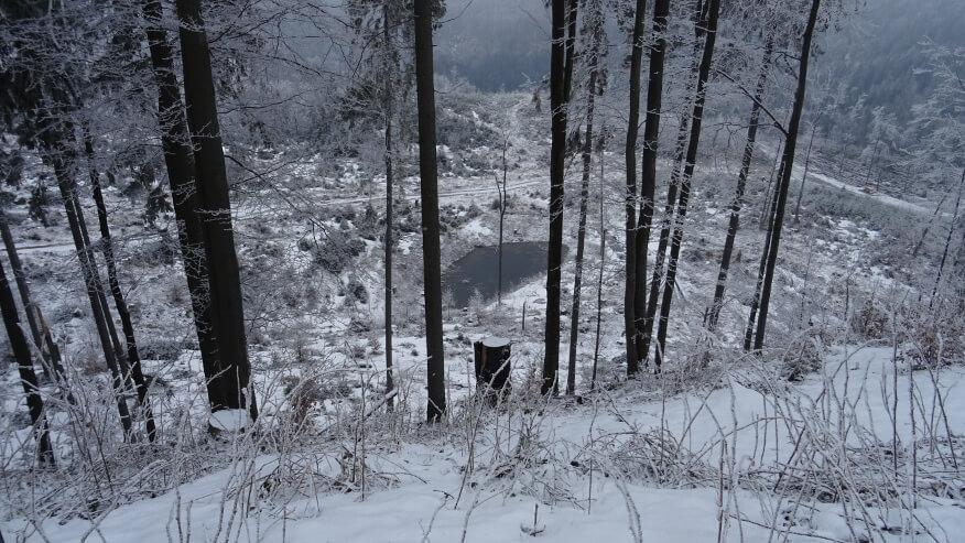 Stawek w okolicy Przegibka