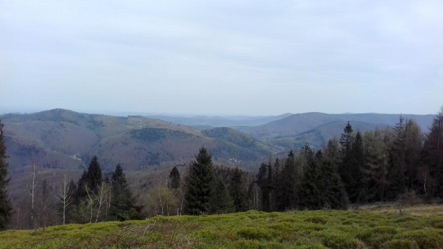 Trzonka, Mała i Wielka Bukowa oraz Przełęcz Targanicka z Kiczery