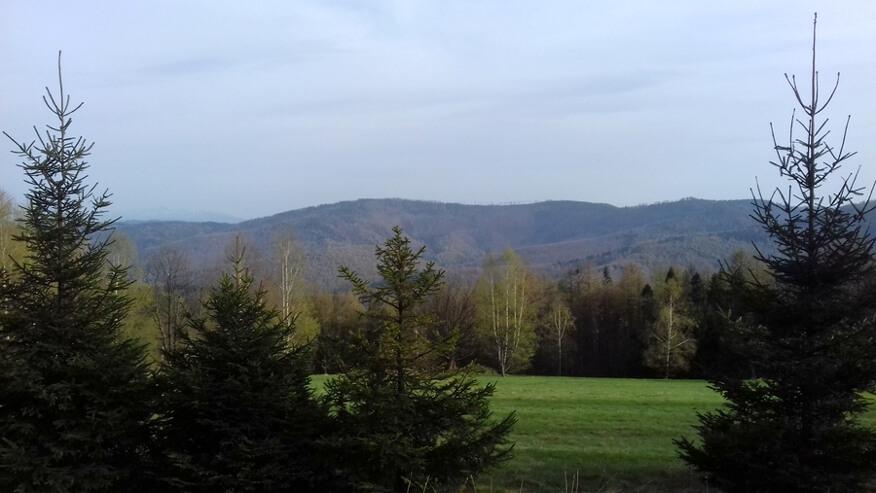 Widoki z okolic Bukowskiego Gronia