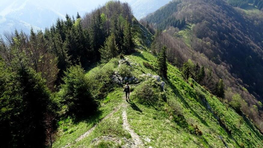 Zejście z Baraniarek