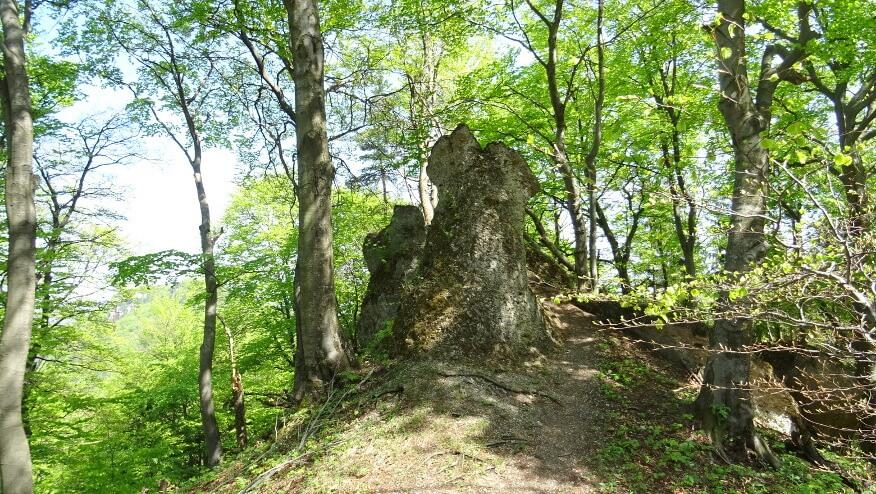 Skałki przy szlaku w pobliżu Žibrida