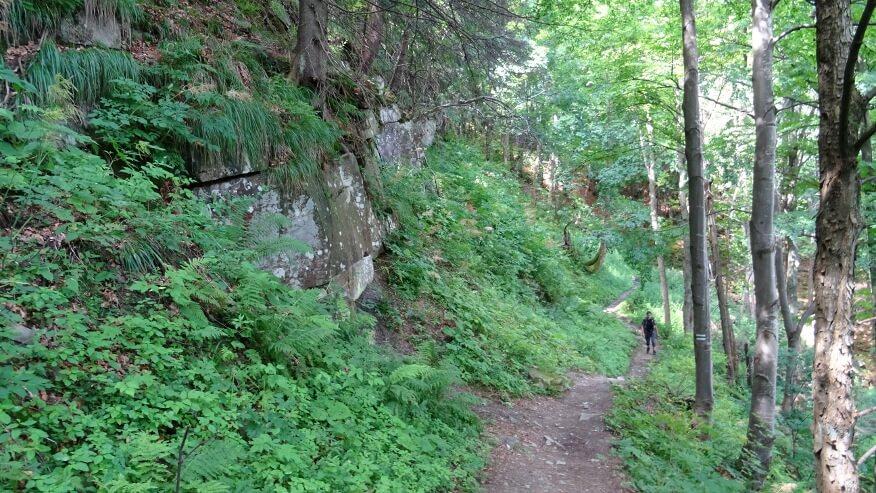 Skałki przy zielonym szlaku na Lipowską