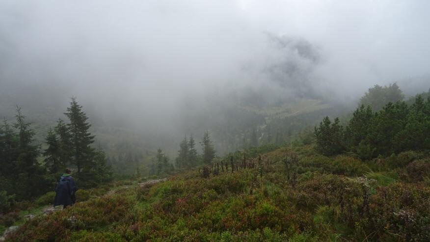 Zejście do Doliny Kondratowej