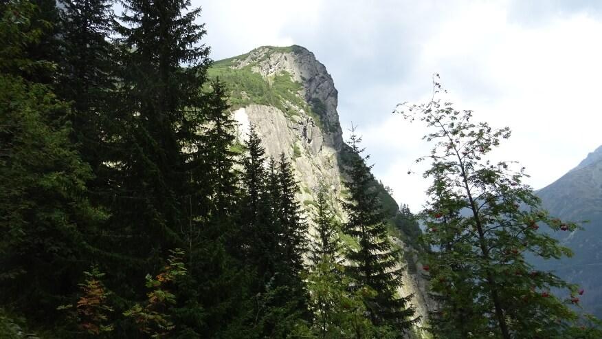 Stroma turnia na Młynarzu