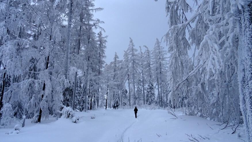 Asia w krainie śniegu