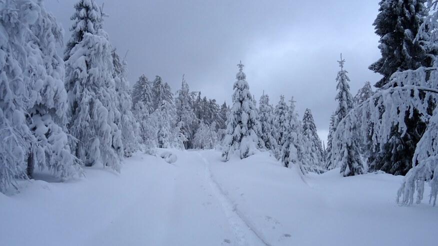 Zima w pełni