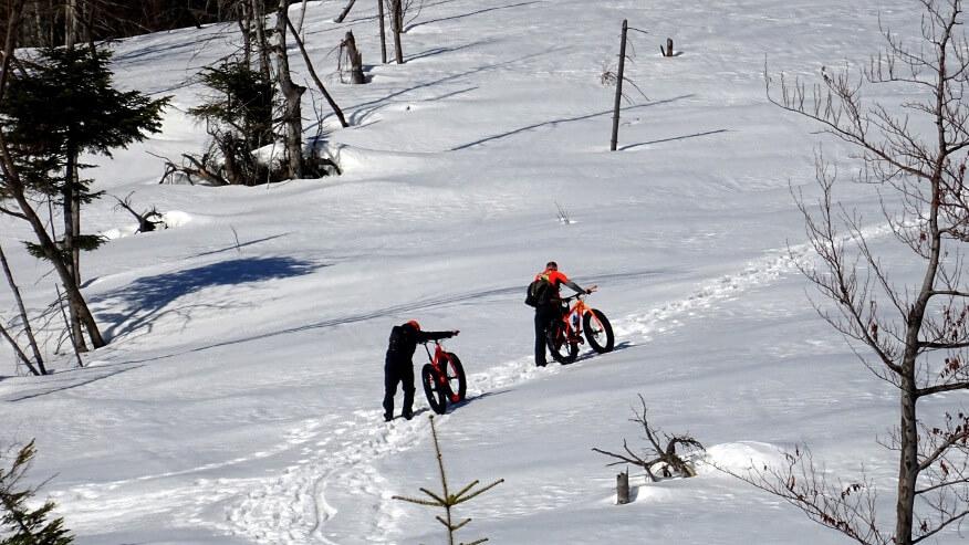 Górscy rowerzyści