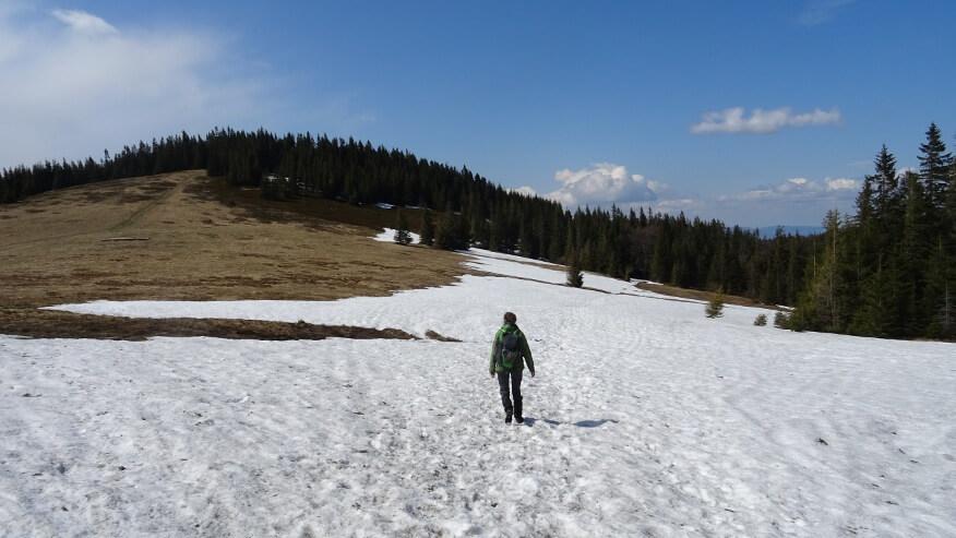 Częściowo pokryta śniegiem Hala Jodłowcowa