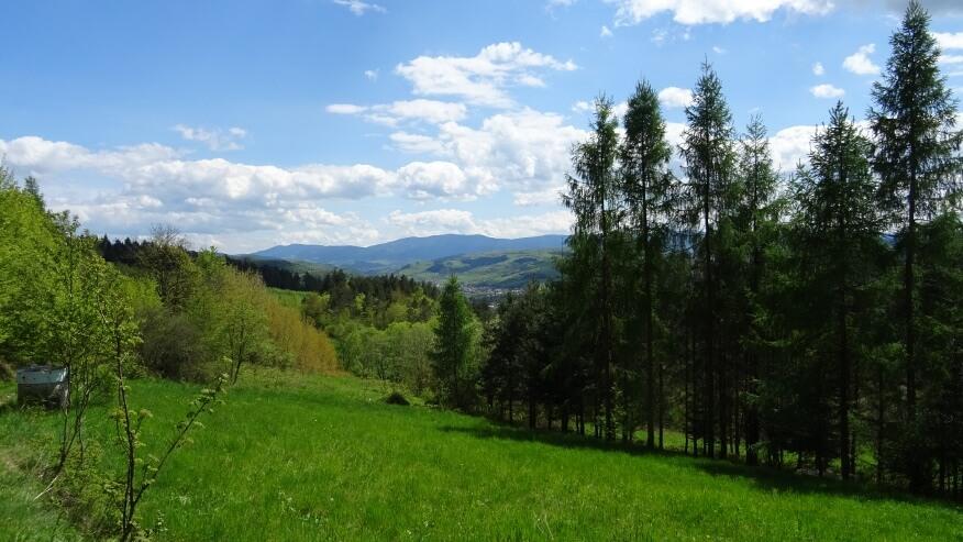 Widoki z zielonego szlaku