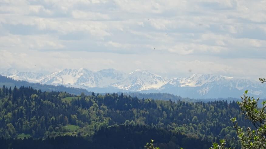 Tatry z zielonego szlaku