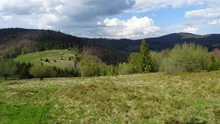 Widok z Przechyby na Przechybke i Gorca