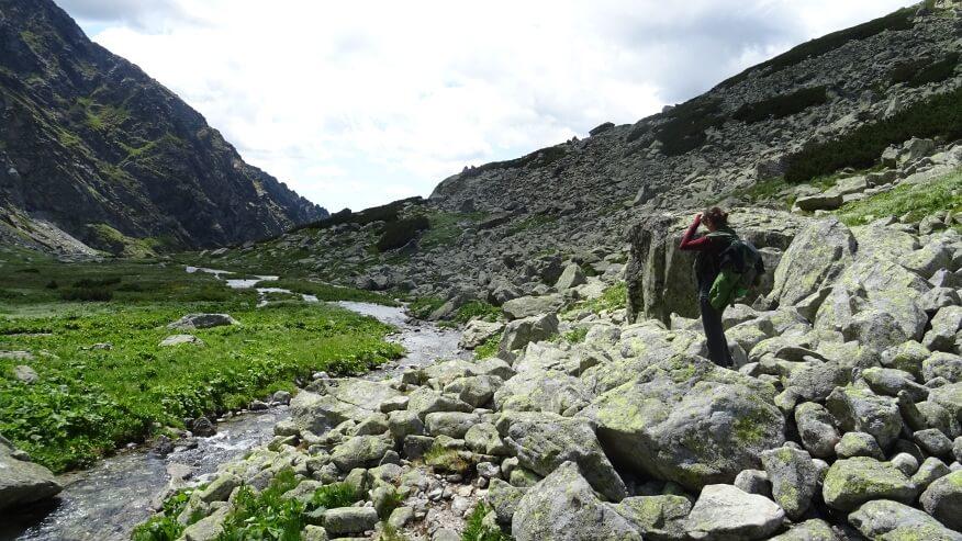 Strumyk i łąki w Dolinie Złomisk