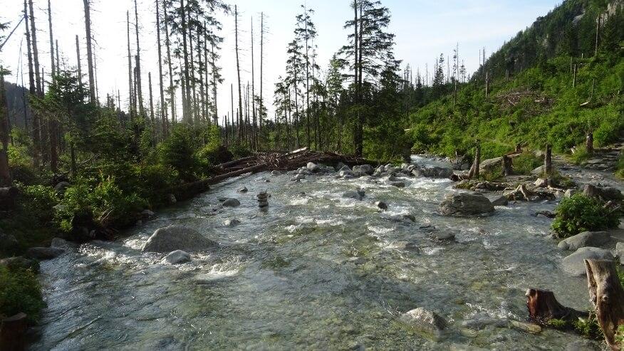 Staroleśny Potok zalewający szlak