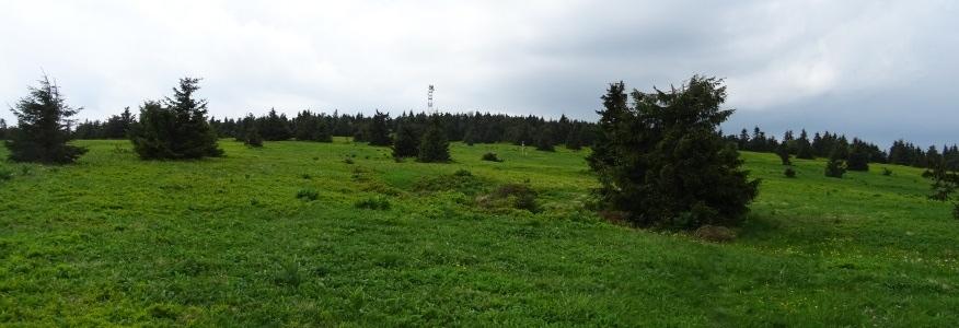 Widok z Kubińskiej Hali na wierzchołek Mincola