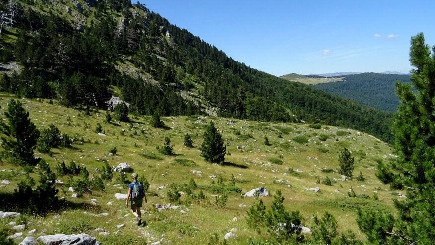 Widoki z okolicy szczytu Varda