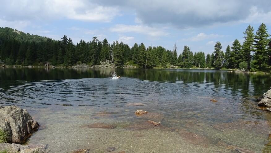 Jeden z pierwszych mężczyzn (tego poranka) zażywających kąpieli w Hridsko Jezero