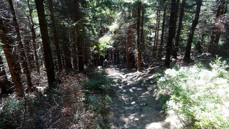 Paraczowo-podszczytowa stromizna