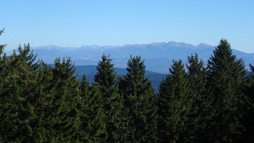 Widok z Hali Držatín na Tatry