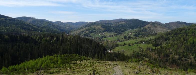 Panorama z podejścia na Praszywkę Wielką