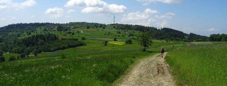 Koskowa Góra od strony Parszywki