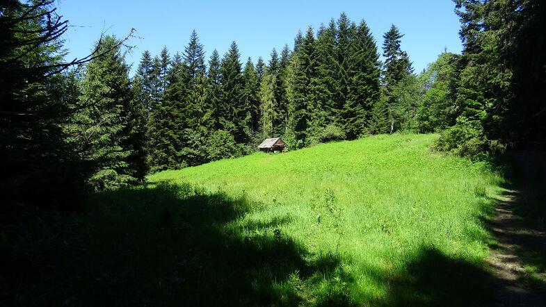 Zadbany szałas na Wierzbanowskiej Górze