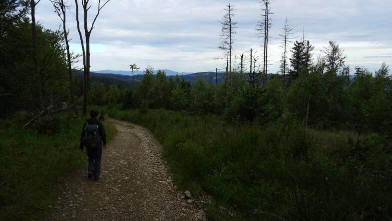 Schodzimy ze szczytu Leskowca