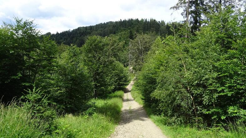 Przełęcz Isepnicka z górującą nad nią Kiczerą