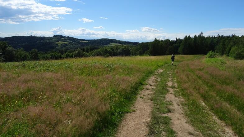 Wielkie łąki na szlaku