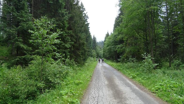 Rowerzyści na zielonym szlaku