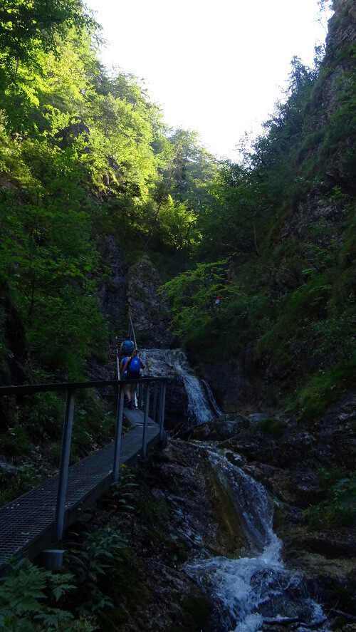 Pomost i schodki nad Dierovým potokiem