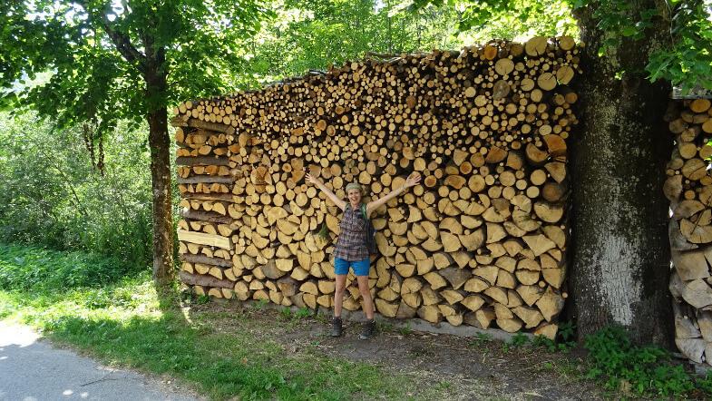 Asia i kupa drewna